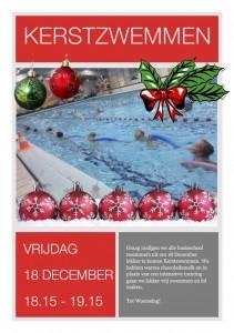 zvzwartsluis kerstzwemmen2015